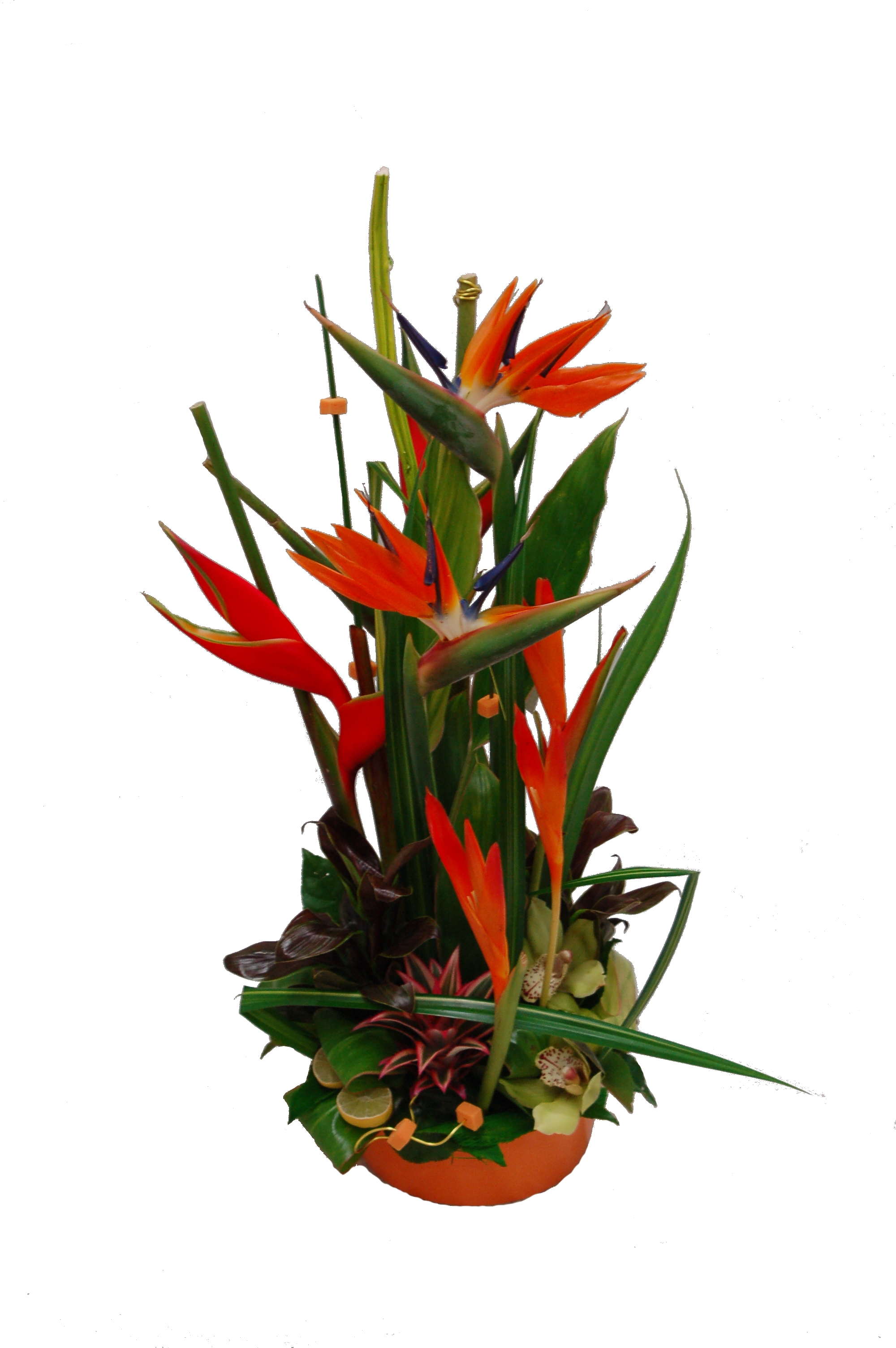 Compositions fleurs naturelles c perraud fleurs - Coeur en fleurs naturelles ...